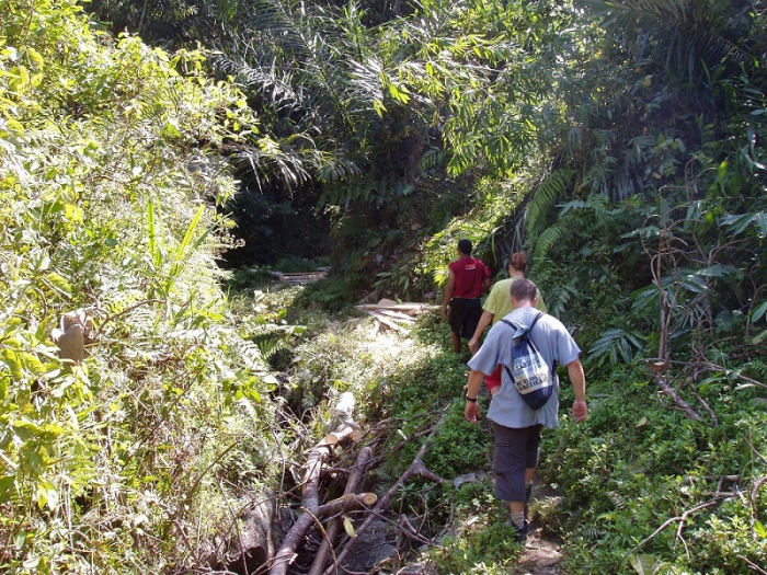 ubud hiking sobek